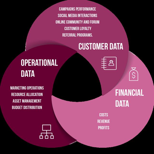 SaaS Data Mining