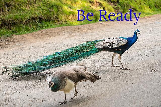 Buyer's journey, consideration stage, inbound marketing